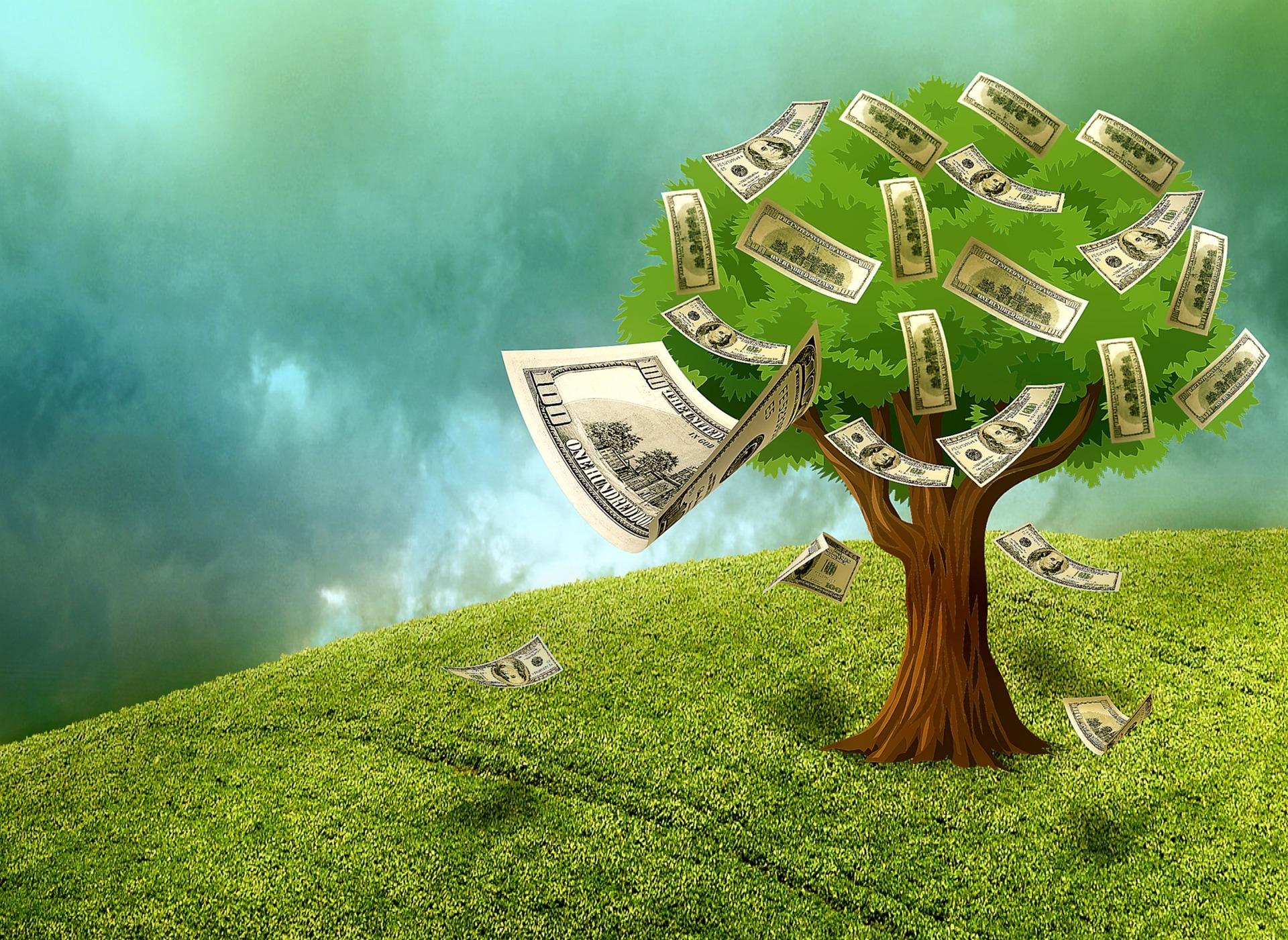 wydatki na nabycie akcji Podatki w spółkach